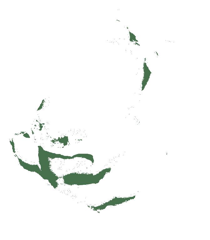 morelia-viridis